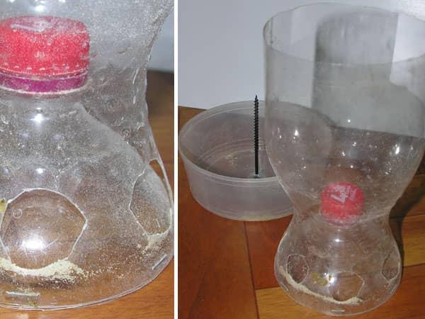 Как сделать поилку для цыплят из пластиковой бутылки своими