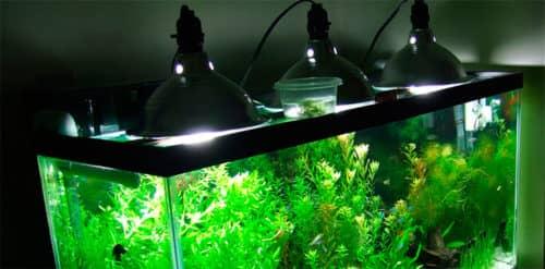 Как своими руками сделать свет в аквариуме своими руками 60