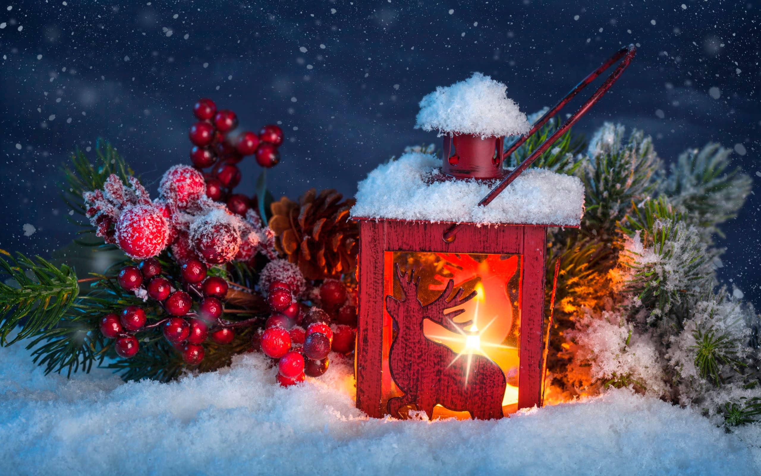 Скачати фото гола снігурочка фото 498-70