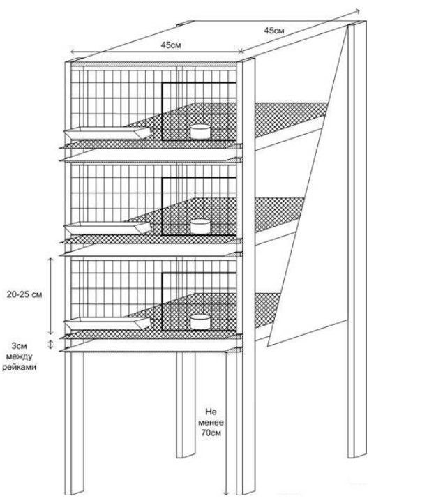 Как сделать клетки для перепёлок несушек